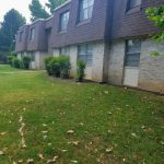 1120 E 9th St Apt 43 Treeview  $495/$495